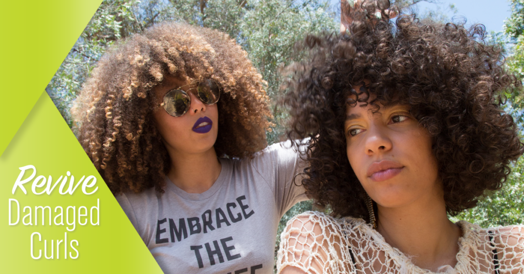 DevaCurl Blog: Damaged Curls? Here's how to Revive Them
